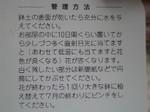 4.22kasiwaba3.JPG